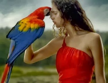 Woman-and-parrot_cropped_374x286